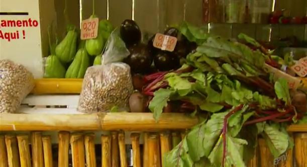 Conheça barraquinha de produtos orgânicos sem vendedor em Delfim Moreira (MG) 6