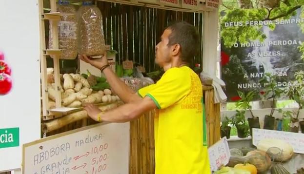 Conheça barraquinha de produtos orgânicos sem vendedor em Delfim Moreira (MG) 4
