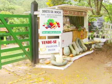 Conheça barraquinha de produtos orgânicos sem vendedor em Delfim Moreira (MG) 3