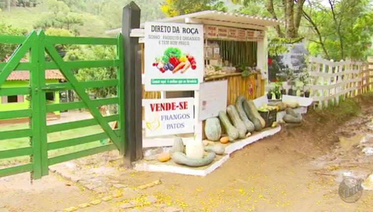 Conheça barraquinha de produtos orgânicos sem vendedor em Delfim Moreira (MG) 1