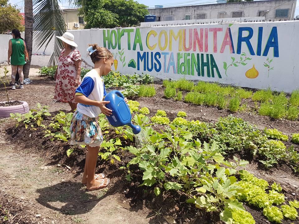 Recife ganha hortas comunitárias