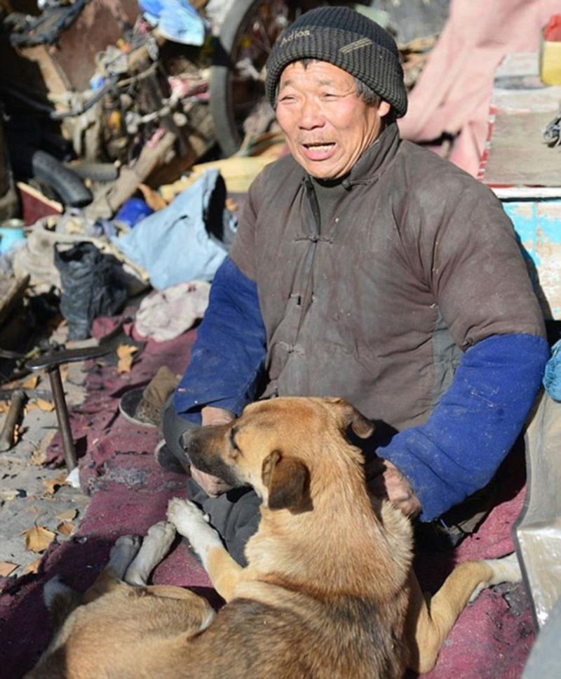 Cão empurra todos os dias a cadeira de rodas do seu dono com deficiência 2