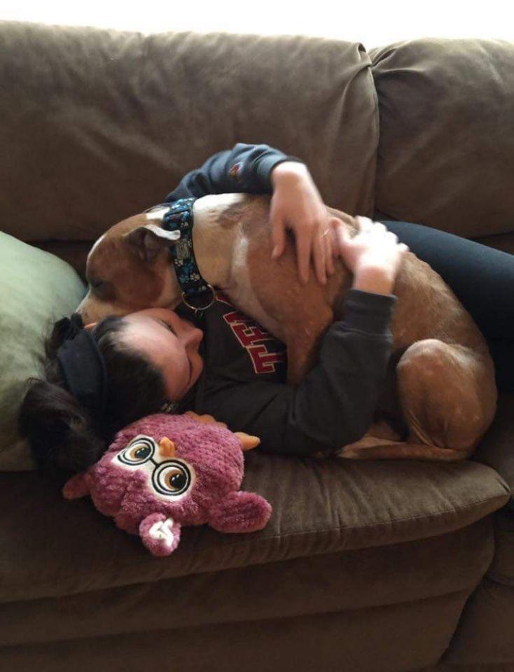 Pit bull vítima de maus-tratos não para de abraçar mulher o adotou 3