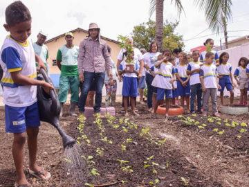 População de Recife que cuida das hortas