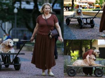 marília passeia com seu cão idoso por Porto Alegre