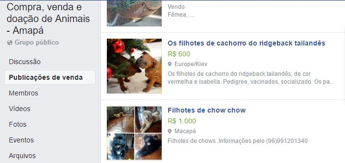 venda de animais foi proibida dentro do facebook 2