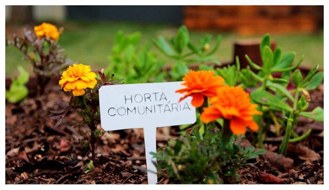 Horta comunitária atibaia