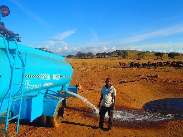 Homem viaja todos os dias para matar a sede de animais