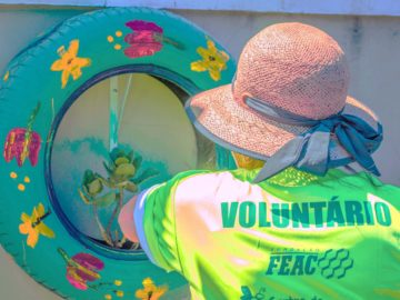 Mutirão voluntário resulta em jardim sensorial em creche 5