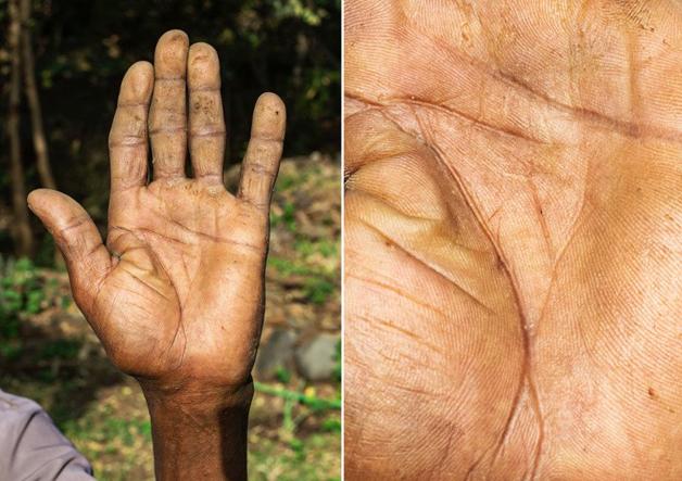 Fotógrafo conta a história de vida das pessoas através da palma de suas mãos 12