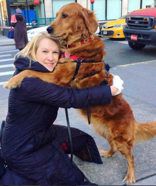 Cão distribui abraços e alivia estresse de pessoas nas ruas de Nova York 1