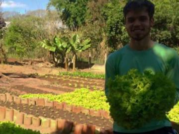 Jornalista larga profissão para produzir comida saudável na roça 12