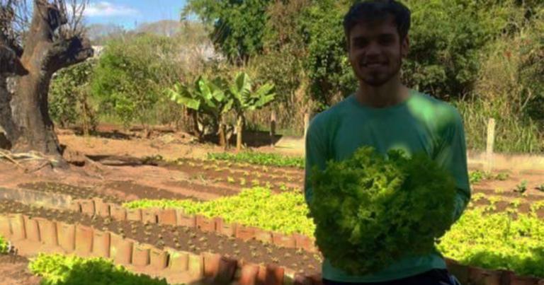 Jornalista larga profissão para produzir comida saudável na roça 1