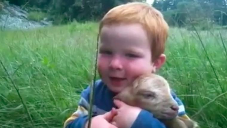Namore alguém que te olhe como esse bebê olha para o seu filhotinho de cabra 3