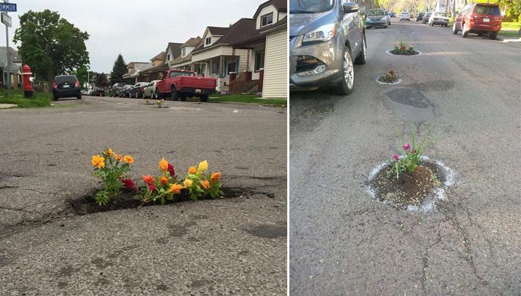 flores em buracos