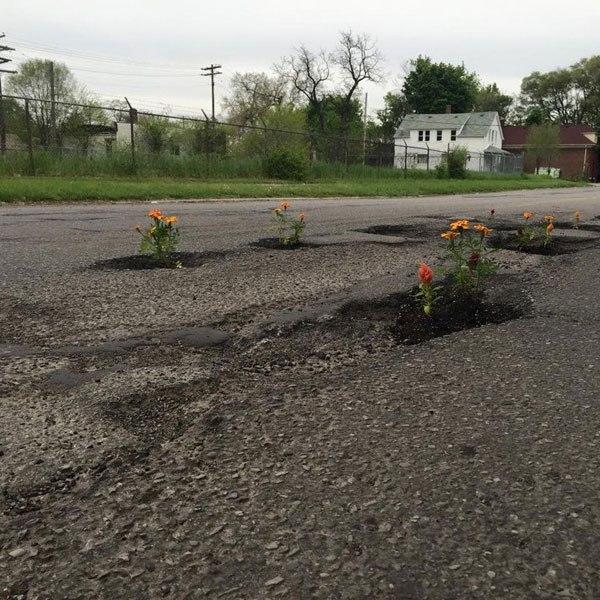 Pessoas tapam buracos de cidades com flores para chamar atenção de autoridades 5