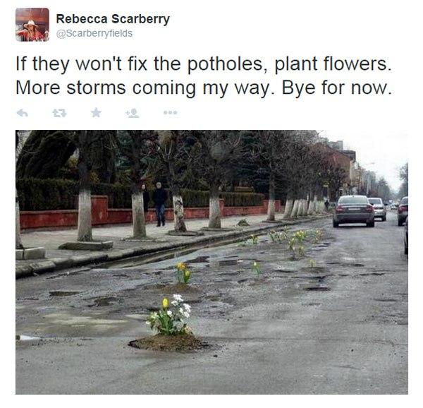 Pessoas tapam buracos de cidades com flores para chamar atenção de autoridades 9