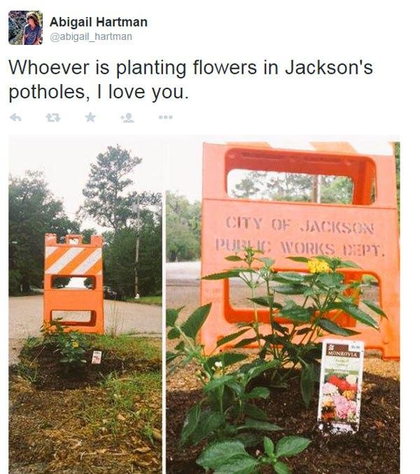 Pessoas tapam buracos de cidades com flores para chamar atenção de autoridades 10
