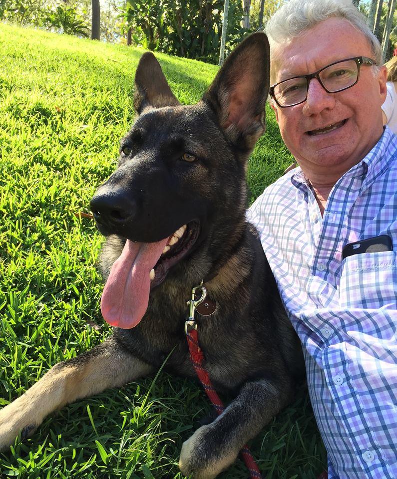 Cãozinho é reprovado em treinamentos da polícia por ser 'dócil demais' 8