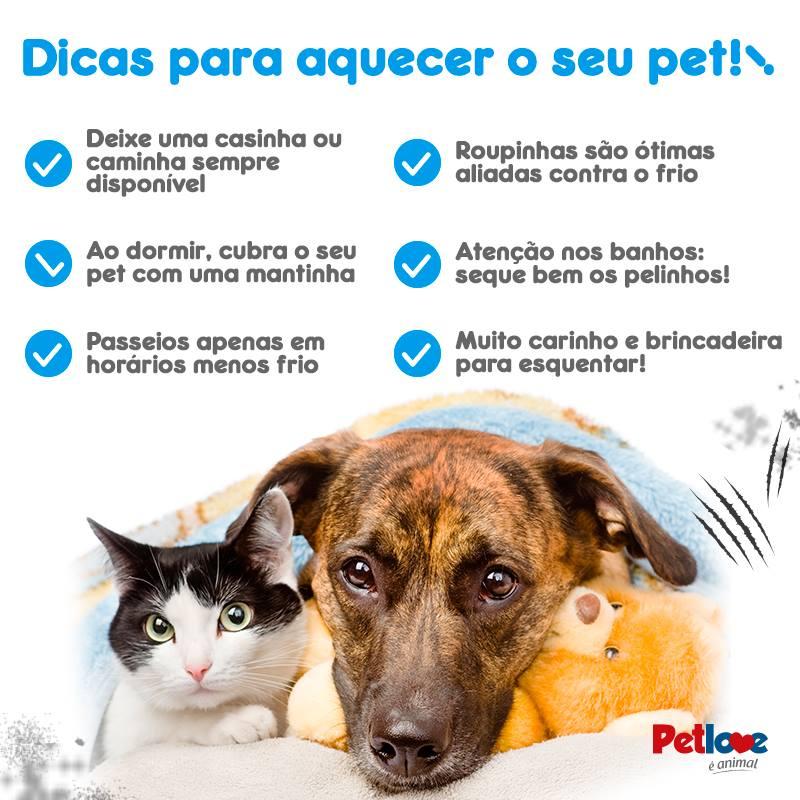 Essa campanha fofíssima vai te convencer a ajudar animais abandonados 4