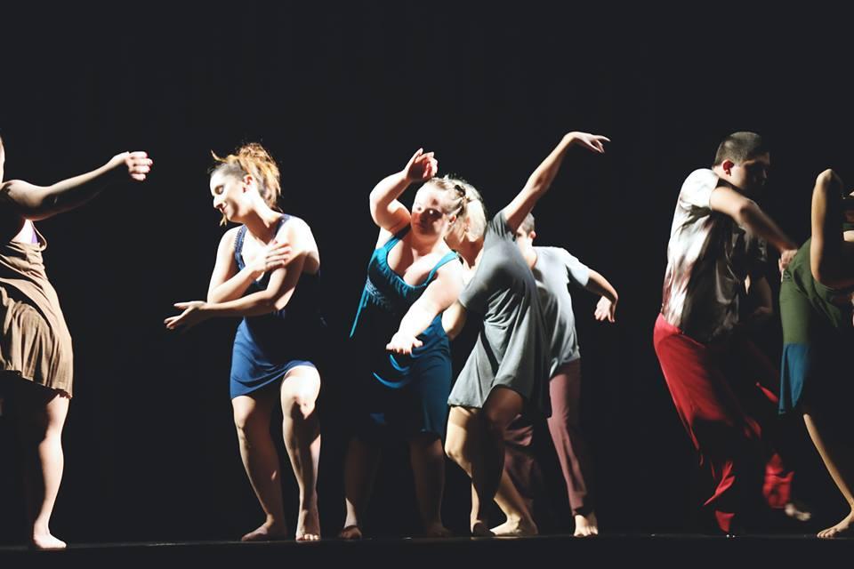 Campanha quer levar primeiro grupo de dançarinos profissionais Down para um dos maiores festivais do mundo 7