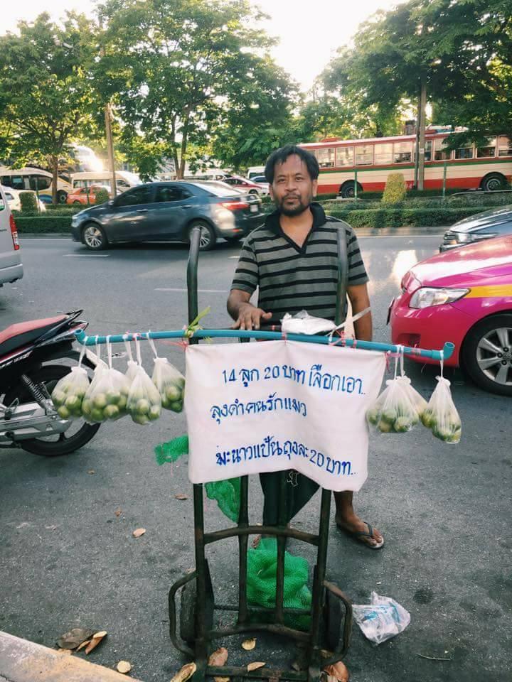 Morador de rua na Tailândia vende limões para poder dar comida para os seus gatinhos 5
