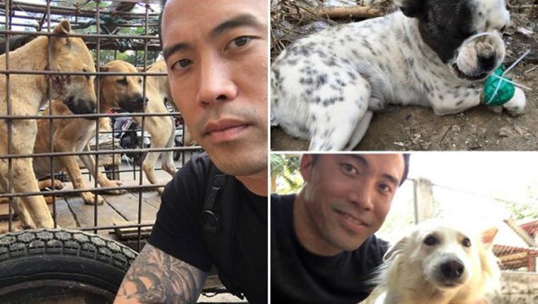 Homem arrisca a própria vida para salvar mais de mil cães em Festival de Carne de Cachorro na China 1