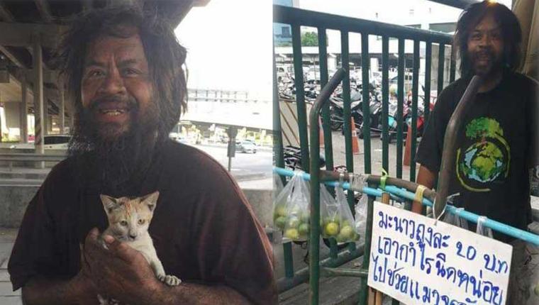 Morador de rua na Tailândia vende limões para poder dar comida para os seus gatinhos 1