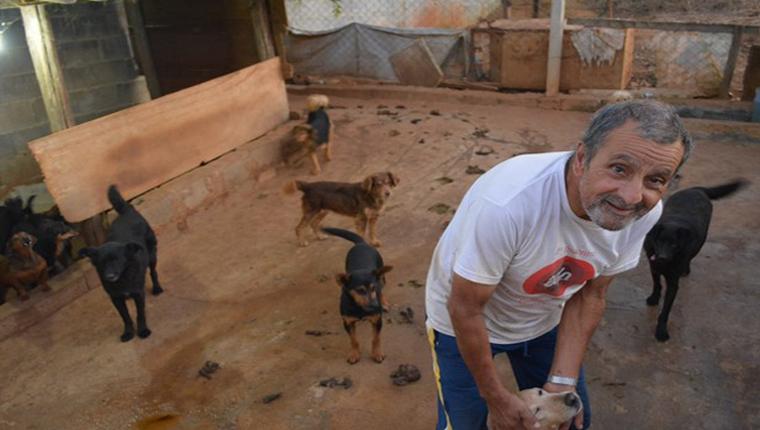 Esse idoso mantém 'vila para cachorros' e gasta toda a sua renda para dar conforto para os bichinhos 6