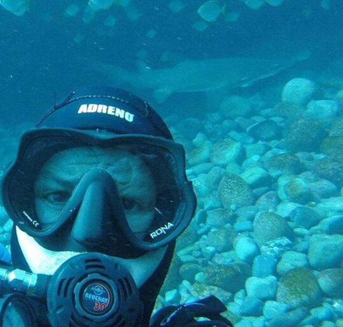 Há sete anos, tubarão implora por abraço de mergulhador todas as vezes que o vê 7