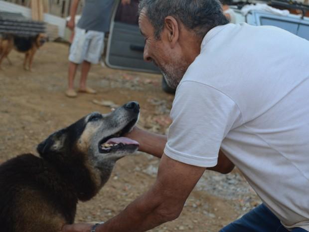 Esse idoso mantém 'vila para cachorros' e gasta toda a sua renda para dar conforto para os bichinhos 3