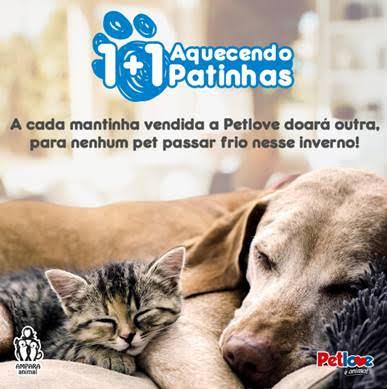 Essa campanha fofíssima vai te convencer a ajudar animais abandonados 3