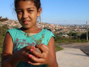 Explorando o bairro, crianças e adolescentes aprendem sobre botânica e preservação ambiental 7
