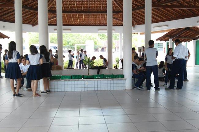 Escola pública no Piauí supera desafios e coleciona mais de 150 medalhas em matemática 5