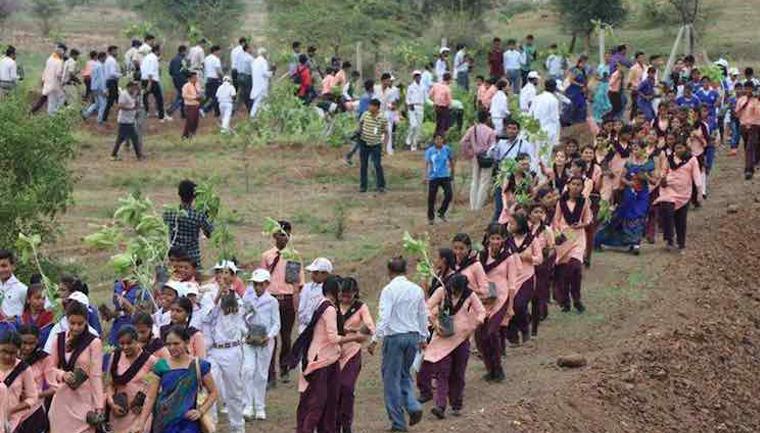 Indianos plantam 66 milhões de árvores em apenas 12 horas e quebram seu próprio recorde 1