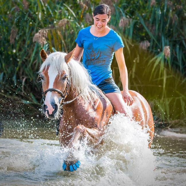 Protetor de plástico com amortecedor pode substituir as incômodas ferraduras em cavalos 5