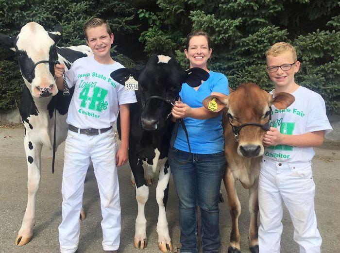 Depois de perder concurso, garoto e sua vaca dormem de cansaço e ganham a internet 4