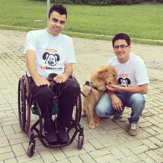 Projeto treina e encaminha gratuitamente cães de assistência à pessoas com deficiência 3