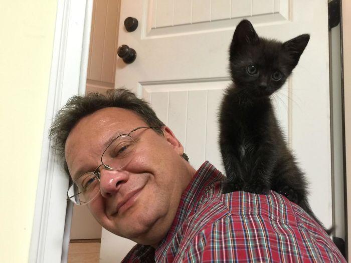 20 pessoas que não gostavam de gatos, mas mudaram de ideia depois de 5 minutos de convivência 11