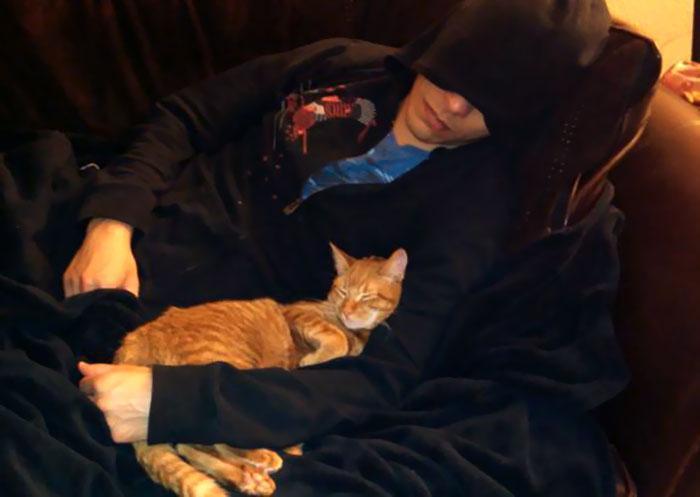 20 pessoas que não gostavam de gatos, mas mudaram de ideia depois de 5 minutos de convivência 19