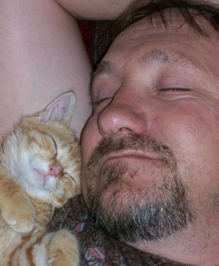 20 pessoas que não gostavam de gatos, mas mudaram de ideia depois de 5 minutos de convivência 4