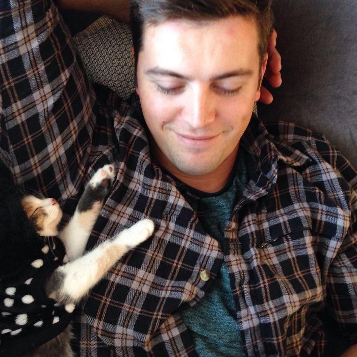 20 pessoas que não gostavam de gatos, mas mudaram de ideia depois de 5 minutos de convivência 8