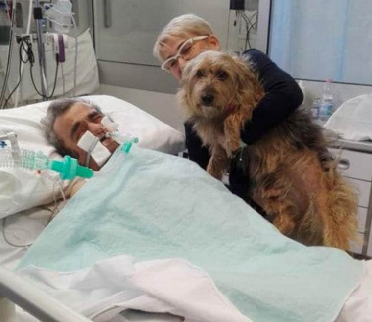 Após várias semanas em coma, homem acorda depois de receber visita de sua cachorra 5