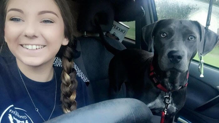 Aluna pede pra levar sua cachorra para a escola e recebe a melhor resposta do professor 10