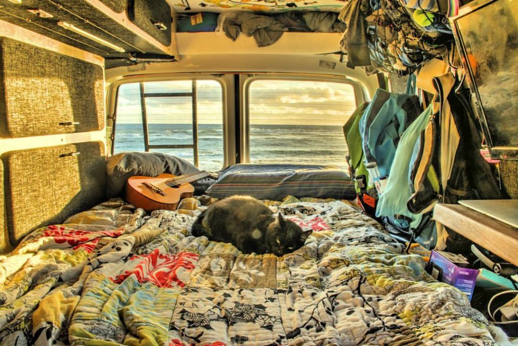 Homem larga tudo para viajar pela Austrália com sua gatinha de estimação 3