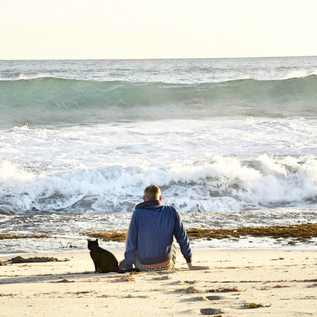 Homem larga tudo para viajar pela Austrália com sua gatinha de estimação 4
