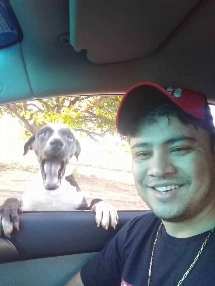 """Homem cria """"restaurante"""" 24 horas para alimentar cachorros de rua 1"""