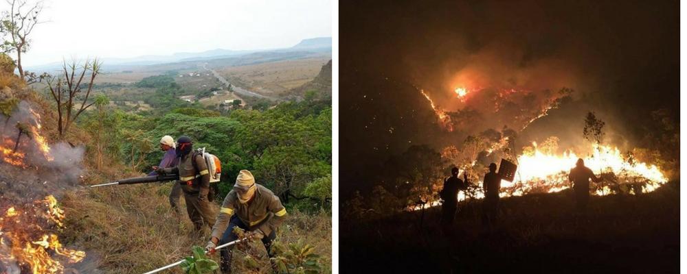 Pessoas do Brasil inteiro se mobilizam na tentativa de salvar o Parque Nacional da Chapada dos Veadeiros 3