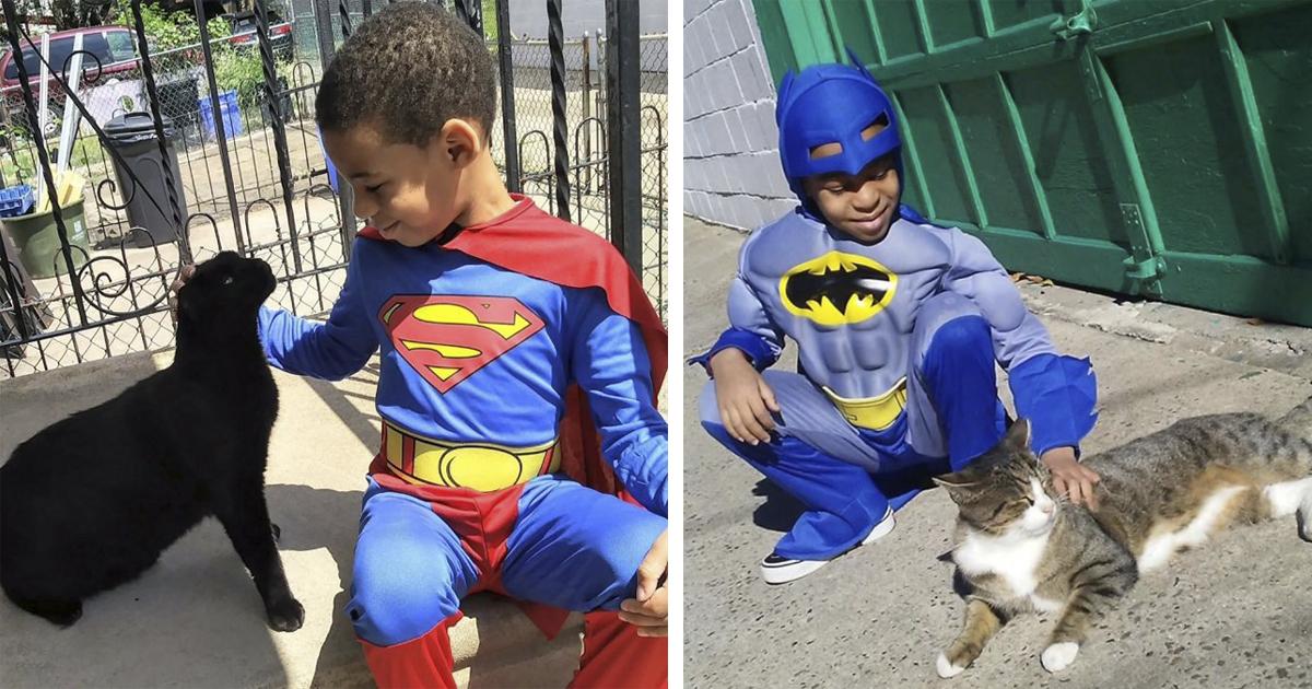 Menino de 5 anos se fantasia de super-herói e ajuda gatos de rua 1