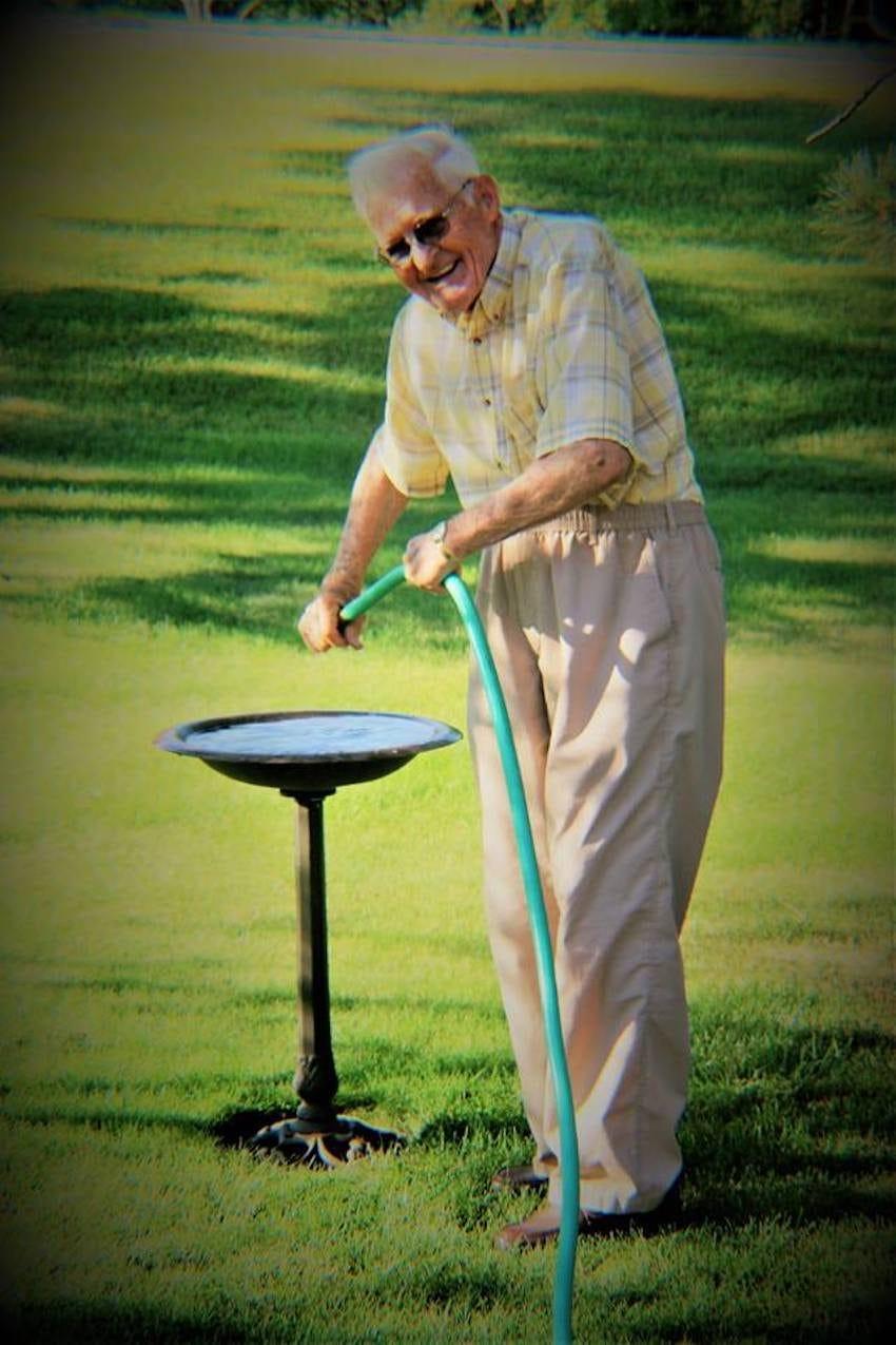 Neta fotografa avós sem que eles soubessem para capturar seu amor atemporal 10